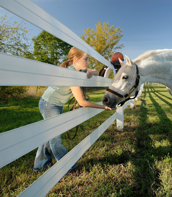 Flex-Fence for Horses