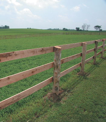 ELECTRIC HORSE FENCING - FENCING ARTICLES