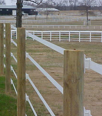 Electric Fence Electric Tape Fence