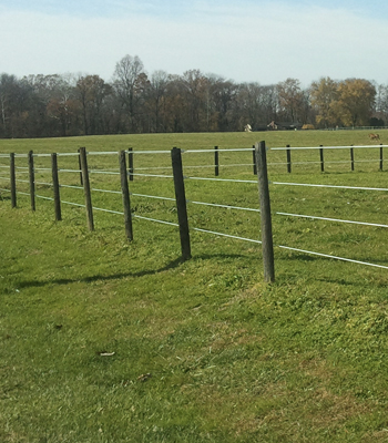 ElectroBraid Electric Horse Fence - 1200 Foot roll