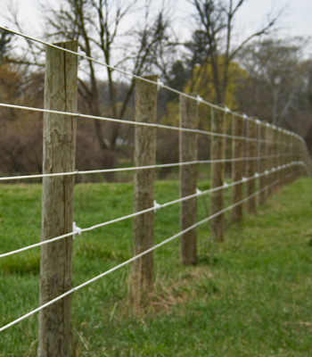 ELECTRO-BRAID HORSE FENCING - DISCOUNT FENCE SUPPLY, INC.
