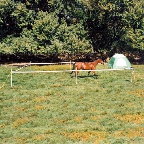 Portable Horse Camping Corral Electric Horse Fencing