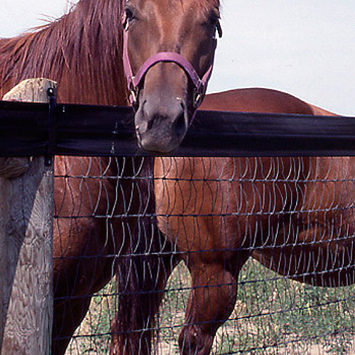 Red Brand Extended Life V Mesh Fence Ramm Horse Fencing