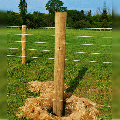 Horse Fence Posts Electric Fence Post Wood Posts