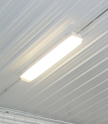 Barn and Arena Lighting