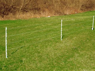 Electric Polywire Fencing Electric Fence