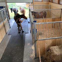 Dublin Portable Panel Horse Stalls