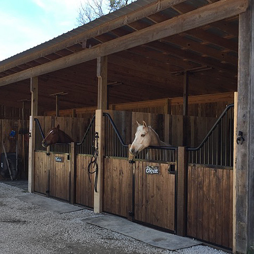 12 Shetland Horse Stall Front Kit Ramm Horse Fencing