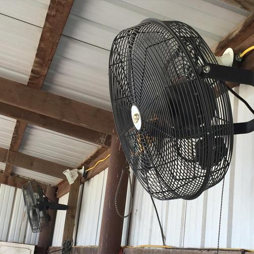 18 Quot Basket Fan Ramm Horse Fencing Amp Stalls