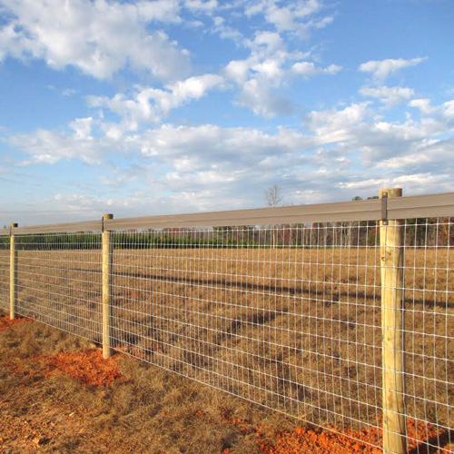 Ramm 2x4 Mesh Fence Ramm Horse Fencing Amp Stalls