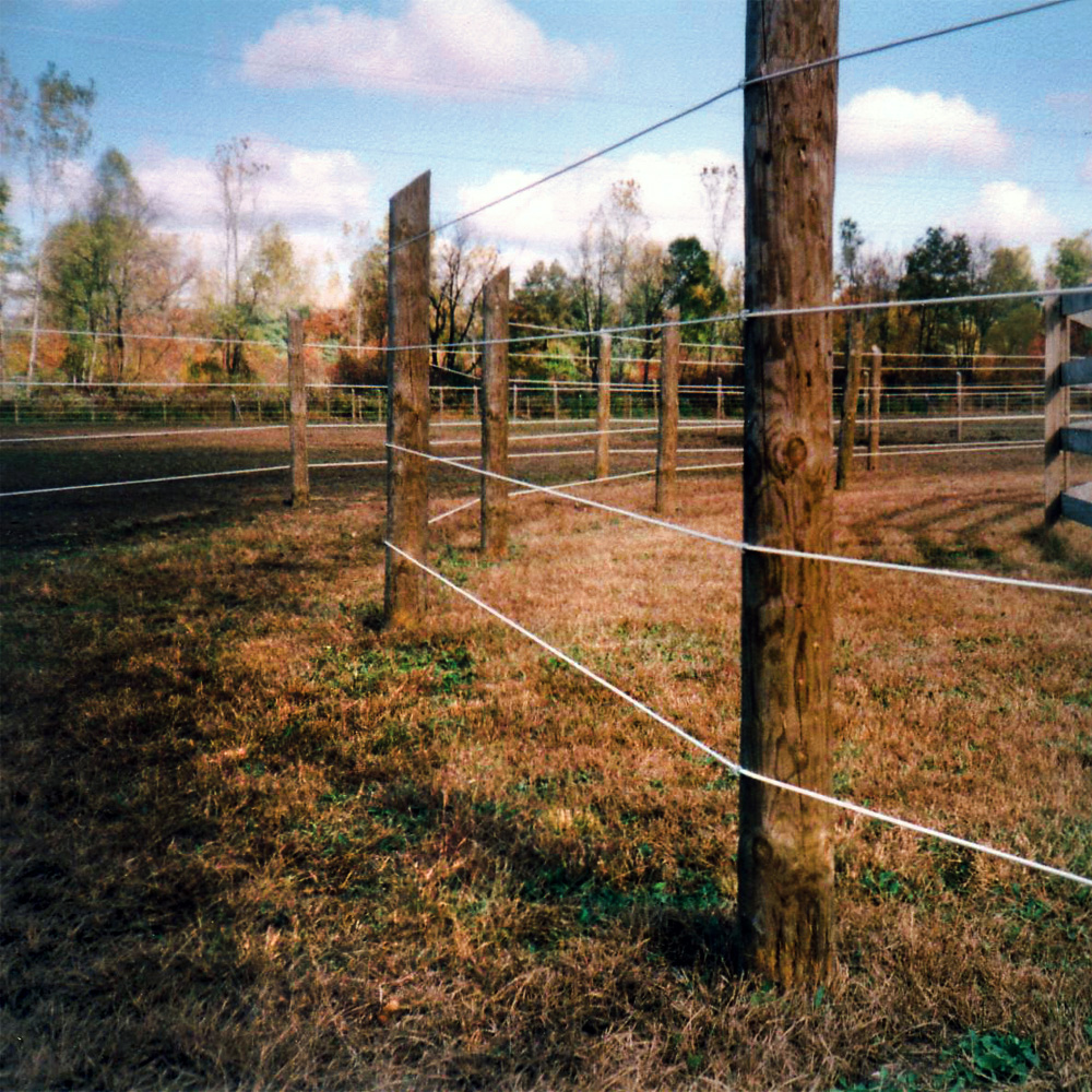 Raceline Flex Fence Coated Wire Ramm Horse Fencing Stalls Electric Accessories 7 Strand