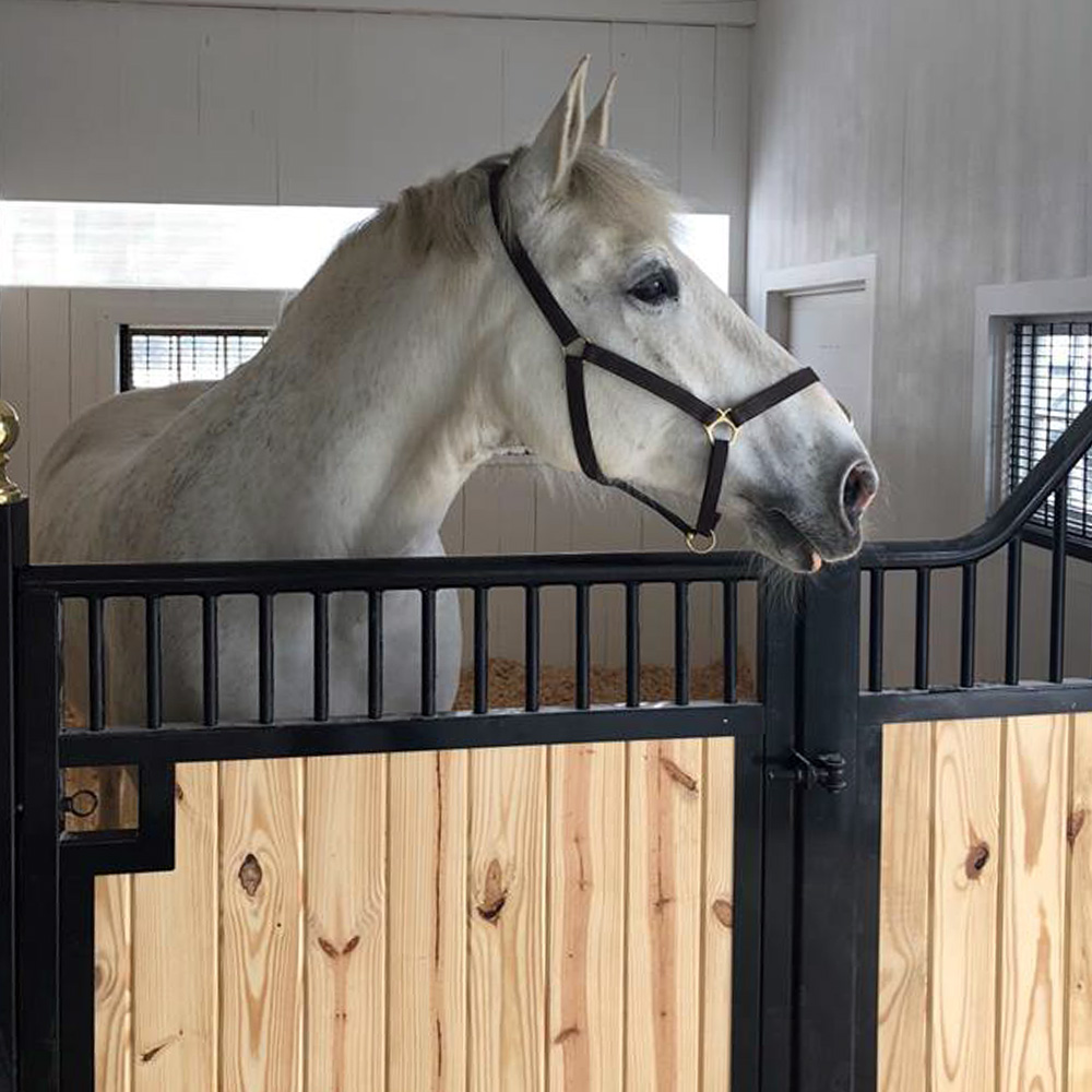 What Is Freight Shipping >> Tuscany Horse Stall Front | Horse Stalls | Stalls | Ramm Fence