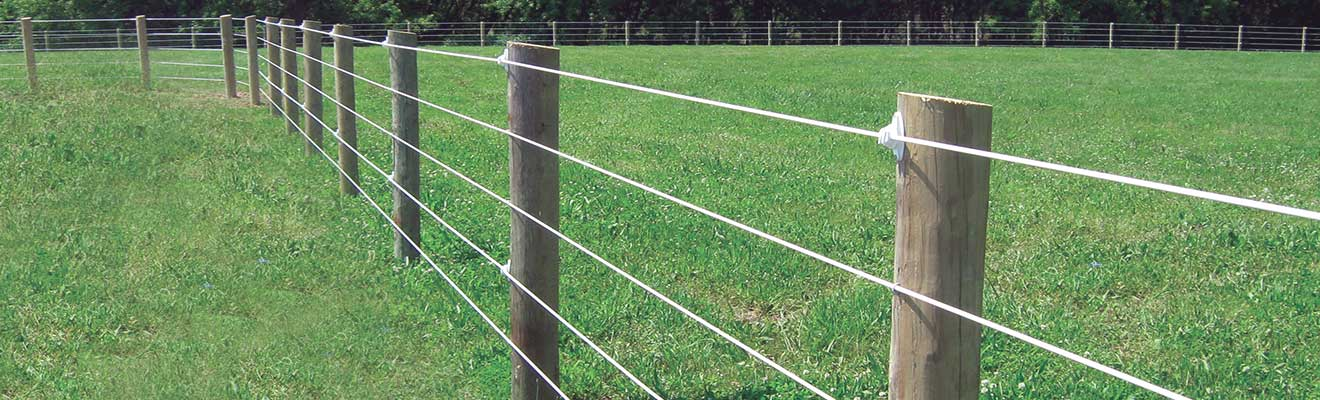 Coated Wire Fence | RAMM Horse Fencing & Stalls